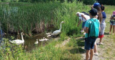 У Закарпатському екоцентрі завершилася червнева навчально-польова практика з екології та біології