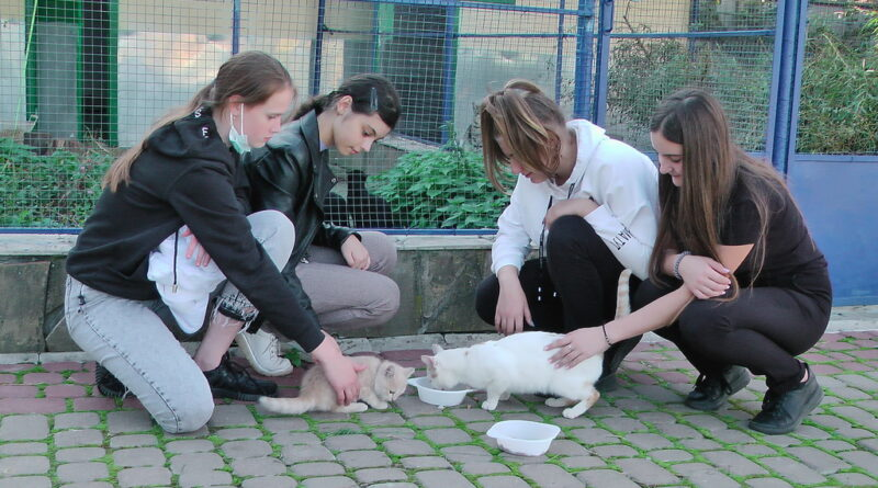 Вихованці ЗОЕНЦ вже традиційно долучились до Всеукраїнського уроку доброти